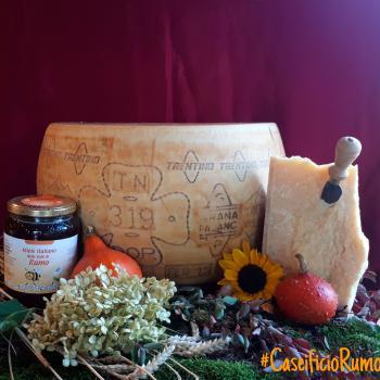 Trentingrana formaggio DOP